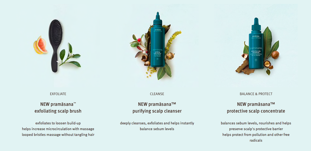New AVEDA  Pramāsana™ Products - Skincare For Your Scalp!